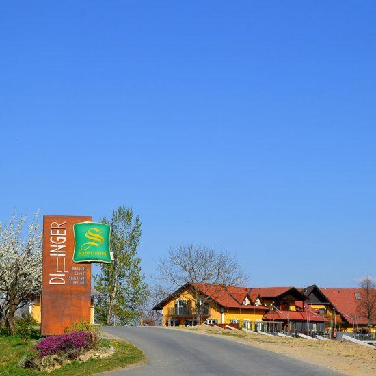 Dillinger Gasthaus mit Pylon